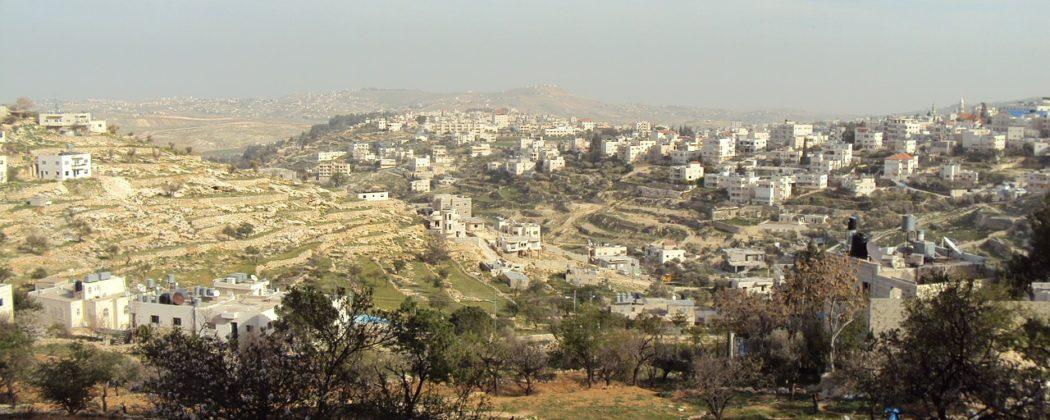 The TU.R.B.O project: Legacoop Emilia-Romagna's missions in Palestine
