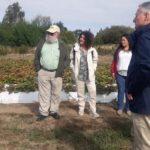 Visita presso le cooperative cilene della comunità Mapuche_1