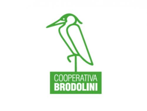 cooperativa brodolini fatturato