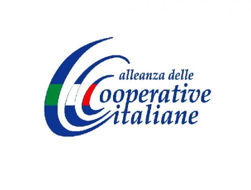 alleanza cooperative ddl lettura