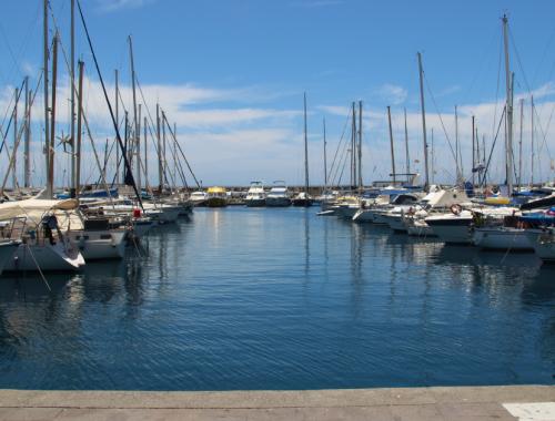 richieste Alleanza delle Cooperative Italiane Pesca